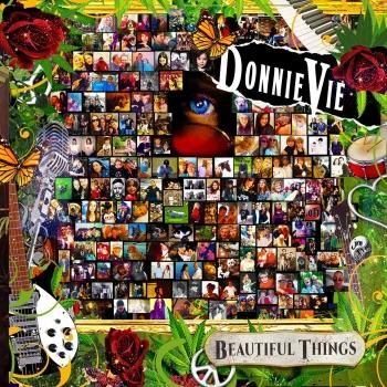 Cover Beautiful Things