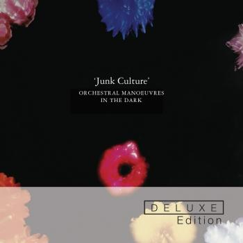 Cover Junk Culture (Deluxe Edition)
