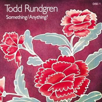Cover Something / Anything? (2016 Remaster)