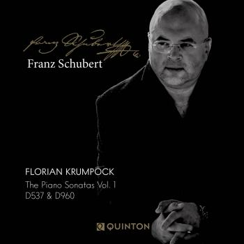 Cover Franz Schubert: The Piano Sonatas Vol. 1