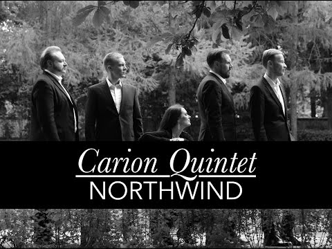 Video Carion Northwind Promotion